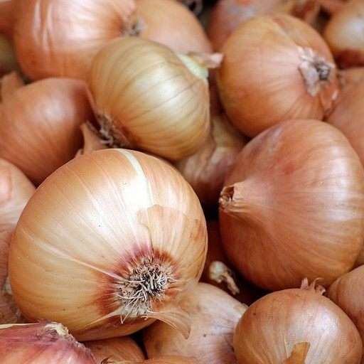 Yellow Sweet Spanish Onion Seeds - pkg